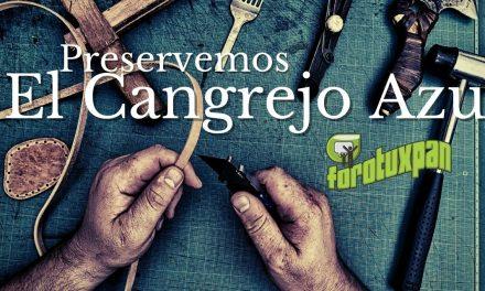 CUIDEMOS Y PRESERVEMOS EL CANGREJO AZUL